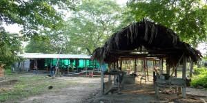Le campement où nous mangeons et dormons