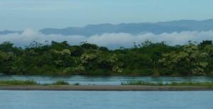 Les bords du fleuve Magdalena qui traverse toute la région où nous sommes